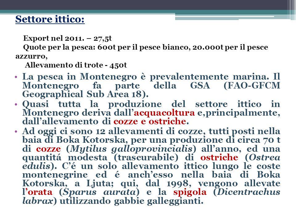 Coltivazione di specie vegetali: Produzione di frutta e verdura (290.000t) 160.000t di frutta e verdura 130.000t di patate Viticoltura: - 4.400ha e 15 milioni di litri - Piccoli produttori (1,2 milioni di litri) Piante medicinali: - Le 2.833 specie e sub specie di piante che crescono solo sullo 0,14% del territorio dell Europa che appartiene al Montenegro, costituiscono quasi un quarto della flora europea.