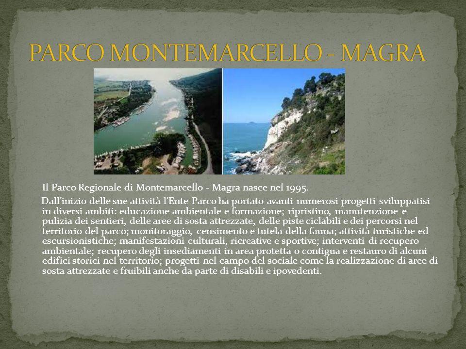 Il Parco Regionale di Montemarcello - Magra nasce nel 1995.