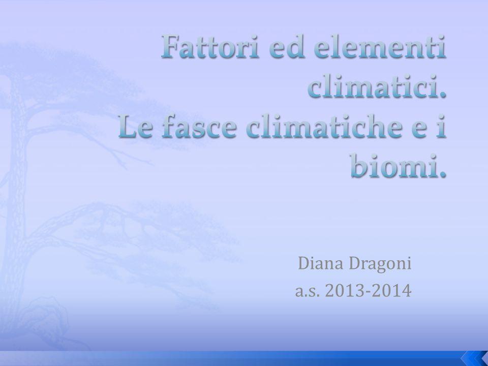 Diana Dragoni a.s. 2013-2014