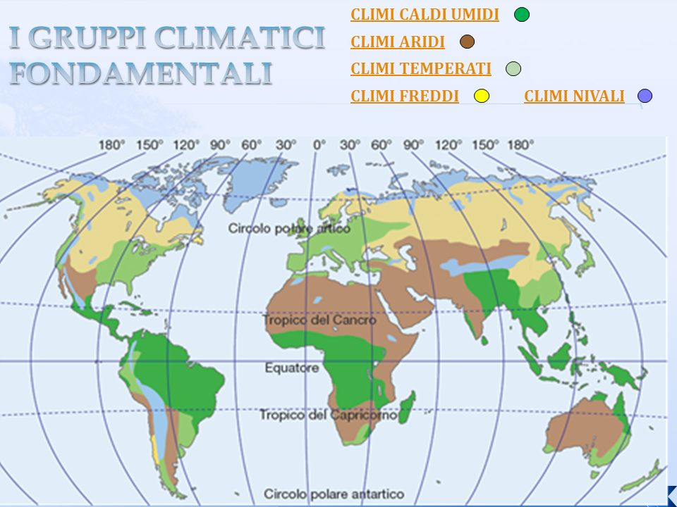 CLIMI CALDI UMIDI CLIMI ARIDI CLIMI TEMPERATI CLIMI FREDDICLIMI NIVALI