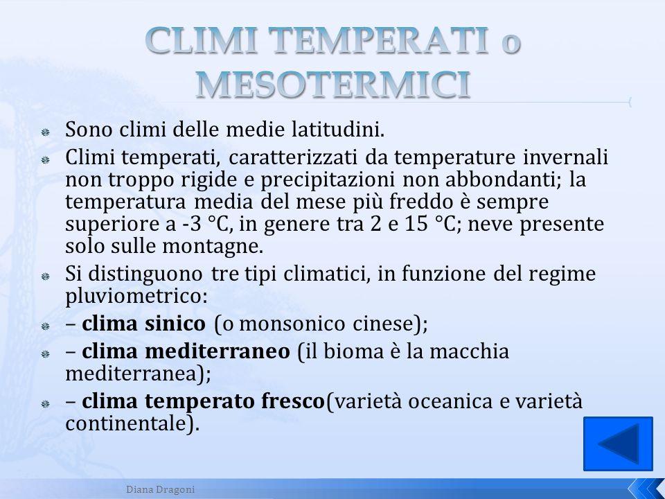 Sono climi delle medie latitudini. Climi temperati, caratterizzati da temperature invernali non troppo rigide e precipitazioni non abbondanti; la temp