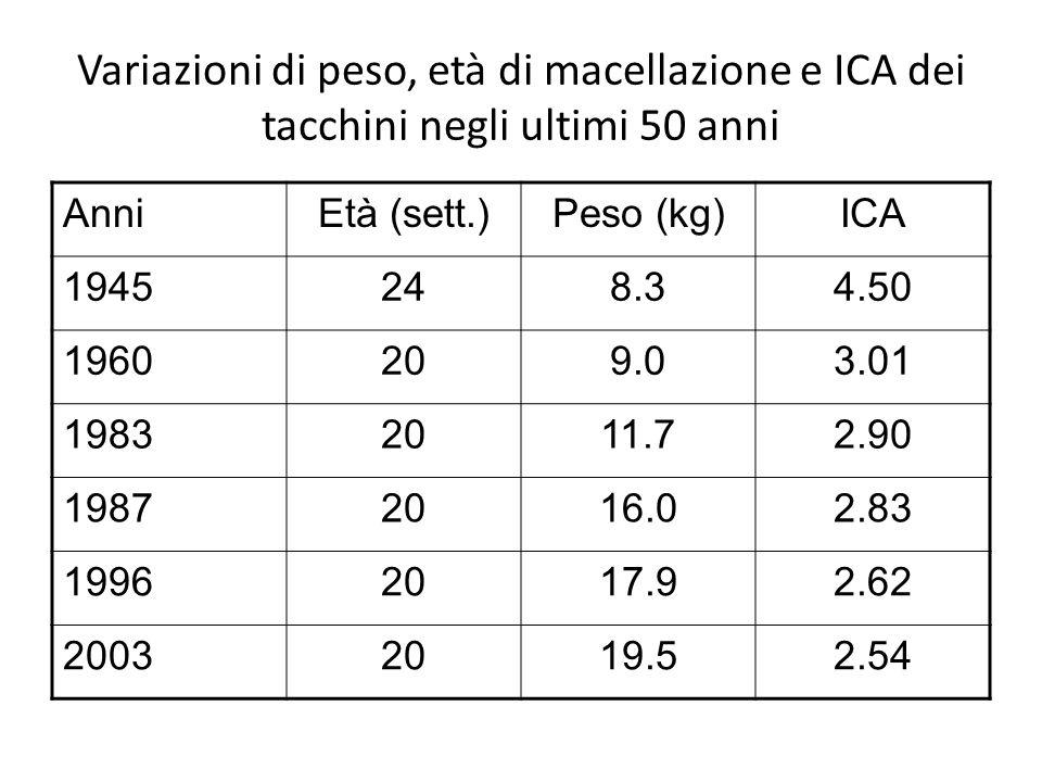 Variazioni di peso, età di macellazione e ICA dei tacchini negli ultimi 50 anni AnniEtà (sett.)Peso (kg)ICA 1945248.34.50 1960209.03.01 19832011.72.90