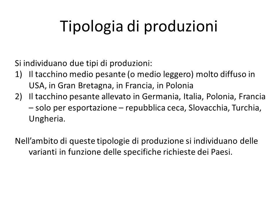 Tipologia di produzioni Si individuano due tipi di produzioni: 1)Il tacchino medio pesante (o medio leggero) molto diffuso in USA, in Gran Bretagna, i