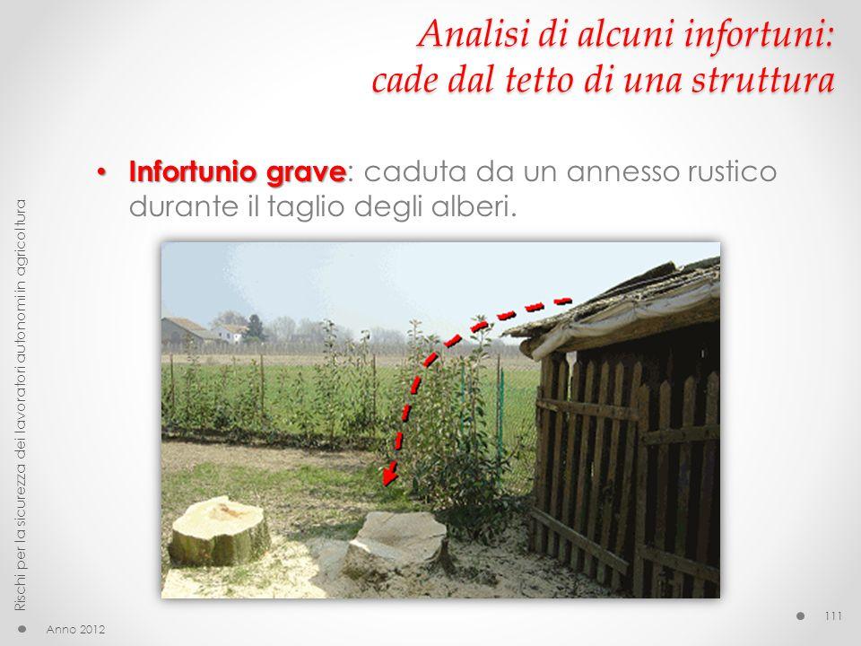 Analisi di alcuni infortuni: cade dal tetto di una struttura Infortunio grave Infortunio grave : caduta da un annesso rustico durante il taglio degli alberi.