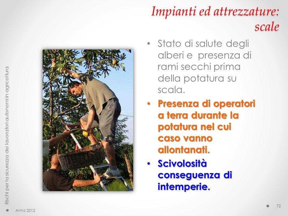 Impianti ed attrezzature: scale Anno 2012 Rischi per la sicurezza dei lavoratori autonomi in agricoltura 72 Stato di salute degli alberi e presenza di rami secchi prima della potatura su scala.