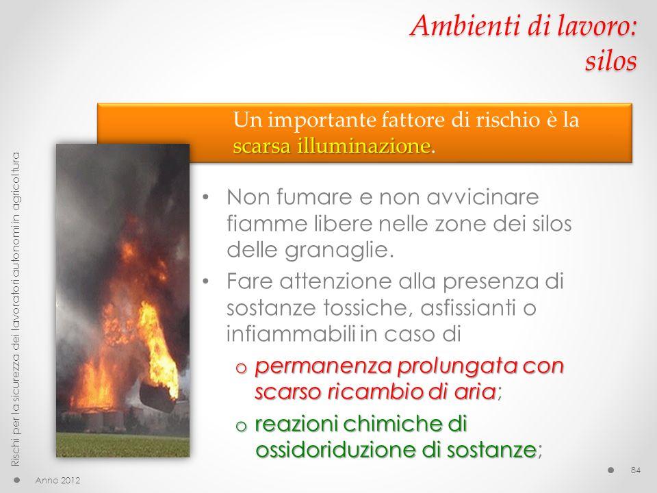 Ambienti di lavoro: silos Non fumare e non avvicinare fiamme libere nelle zone dei silos delle granaglie. Fare attenzione alla presenza di sostanze to