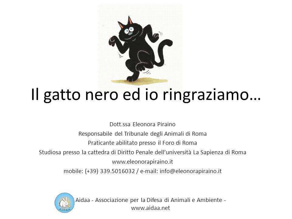 Il gatto nero tra legge e leggenda 1° legge a tutela degli animali: era vietato far del male ai gatti o trasferirli al di fuori del Regno dei Faraoni.