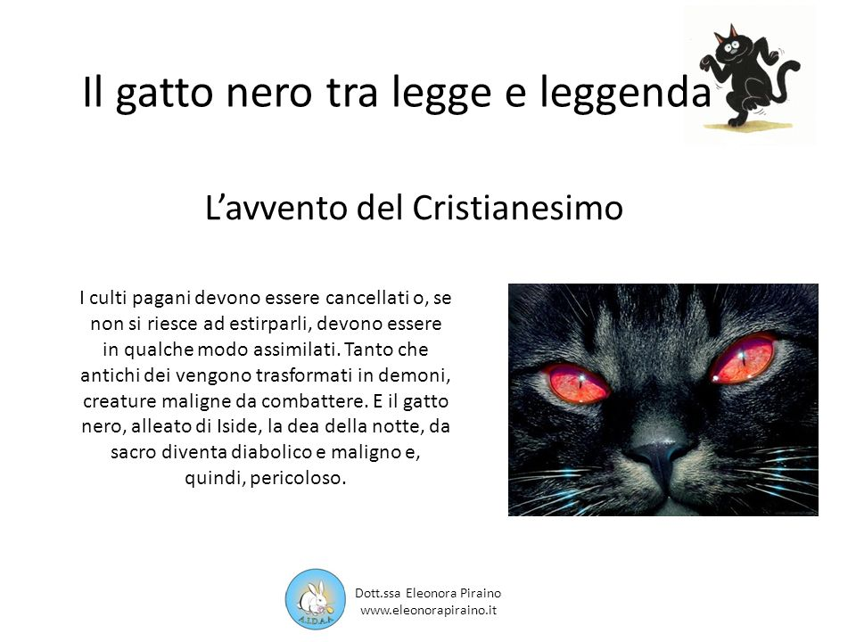 Il gatto nero tra legge e leggenda Rappresenta un periodo buio di ignoranza e malafede in cui i gatti neri vengono considerati un terribile nemico da distruggere con ogni mezzo: i gatti neri venivano bruciati sul rogo insieme alle streghe.