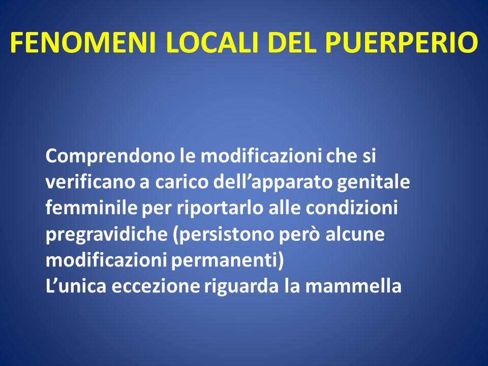 FENOMENI LOCALI DEL PUERPERIO Comprendono le modificazioni che si verificano a carico dellapparato genitale femminile per riportarlo alle condizioni p