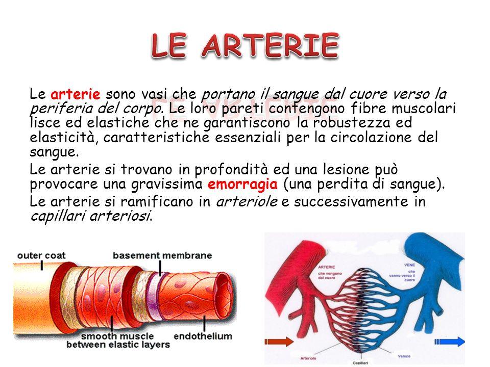 Le arterie sono vasi che portano il sangue dal cuore verso la periferia del corpo. Le loro pareti contengono fibre muscolari lisce ed elastiche che ne