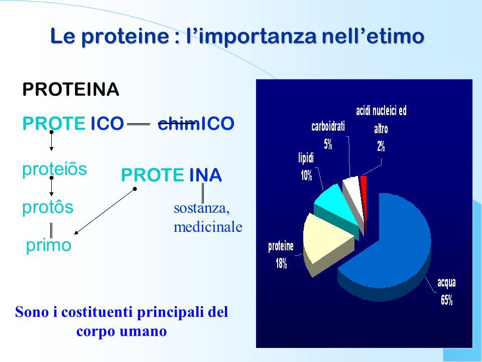 Le proteine : limportanza nelletimo PROTEINA PROTEICO chimICO PROTEINA proteiõs protôs primo sostanza, medicinale Sono i costituenti principali del co