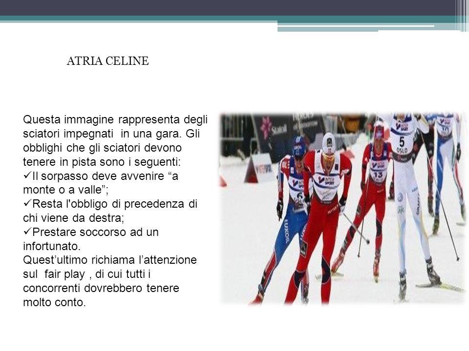 Questa immagine rappresenta degli sciatori impegnati in una gara. Gli obblighi che gli sciatori devono tenere in pista sono i seguenti: Il sorpasso de