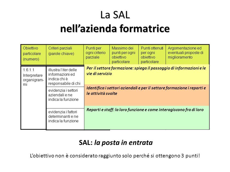 3 superato (perfetto) 2 raggiunto 1 parzialmente raggiunto 0 non raggiunto La SAL nellazienda formatrice Obiettivo particolare (numero) Criteri parzia