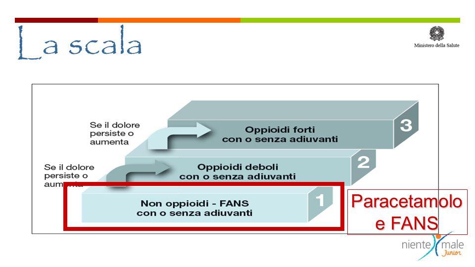 Il più studiato Ibuprofene CONSIDERATO SICURO CONSIDERATO SICURO, attenzione attenzione in caso di : - USO DI DIURETICI, ACE INIBITORI >> rischio di Ira - DISIDRATAZIONE (bimbo piccolo) rischio di IRA - GASTROPATIA E USO DI ANTICOAGULANTI >> rischio di gastrite e emorragia - PIU EFFICACE DEL PARACETAMOLO NEI DOLORI MUSCOLO- SCHELETRICI