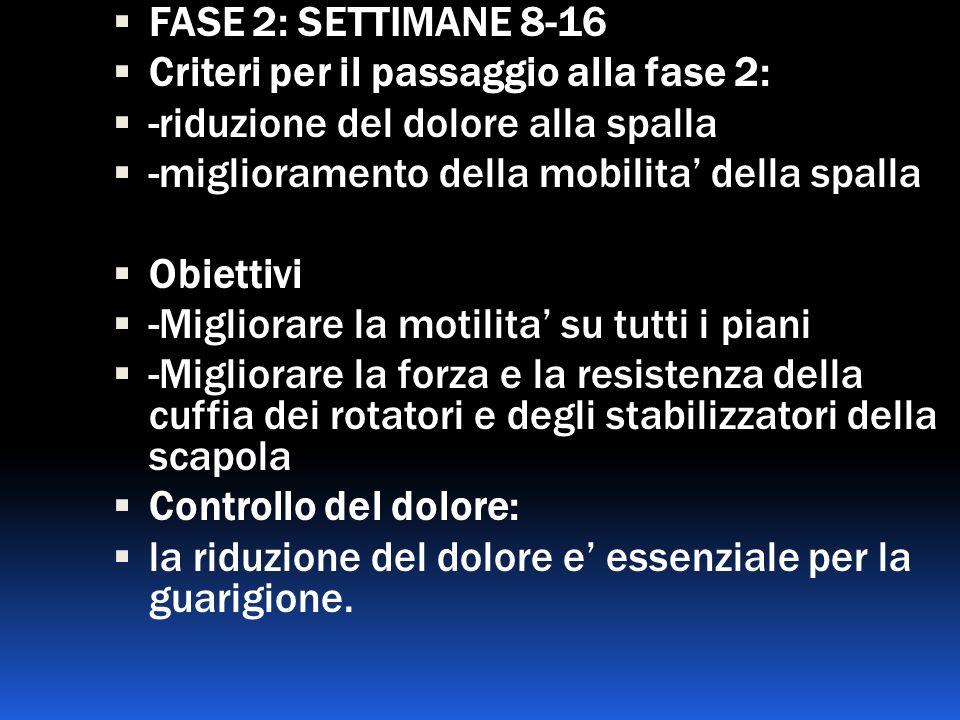 FASE 2: SETTIMANE 8-16 Criteri per il passaggio alla fase 2: -riduzione del dolore alla spalla -miglioramento della mobilita della spalla Obiettivi -M