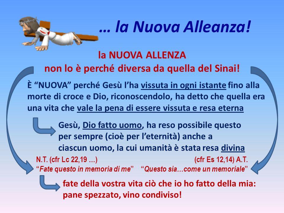 … la Nuova Alleanza! la NUOVA ALLENZA non lo è perché diversa da quella del Sinai! È NUOVA perché Gesù lha vissuta in ogni istante fino alla morte di