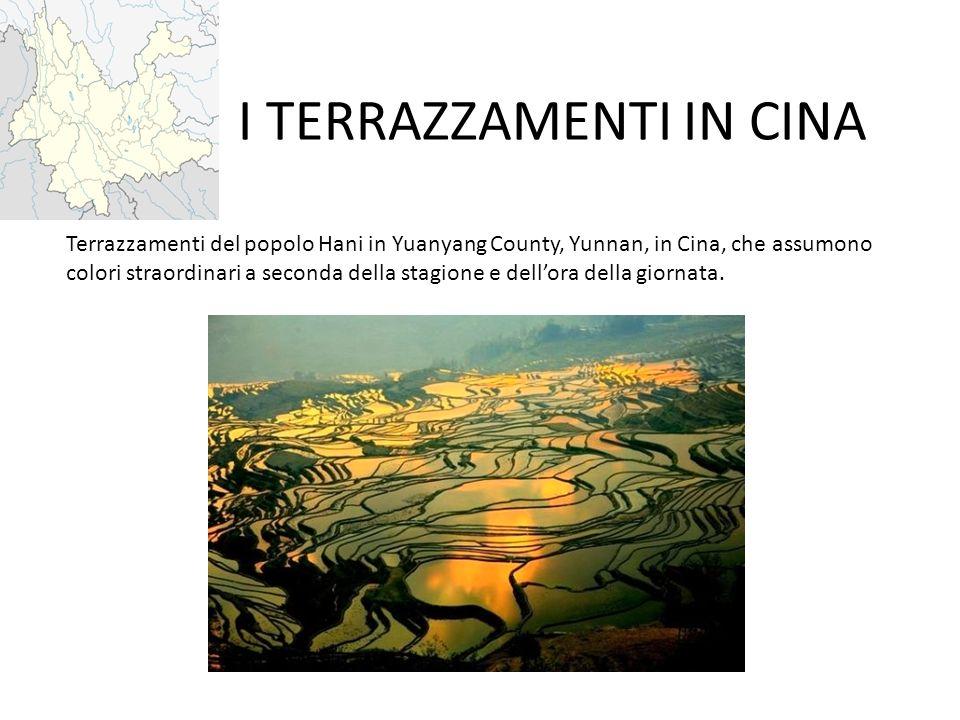 I TERRAZZAMENTI IN CINA Terrazzamenti del popolo Hani in Yuanyang County, Yunnan, in Cina, che assumono colori straordinari a seconda della stagione e