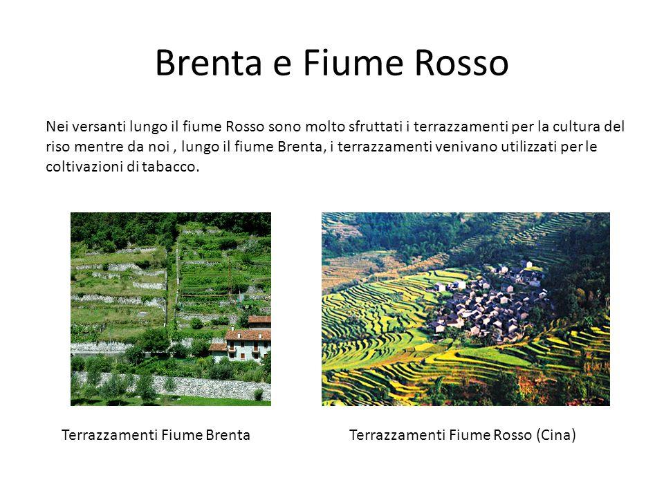 Brenta e Fiume Rosso Nei versanti lungo il fiume Rosso sono molto sfruttati i terrazzamenti per la cultura del riso mentre da noi, lungo il fiume Bren