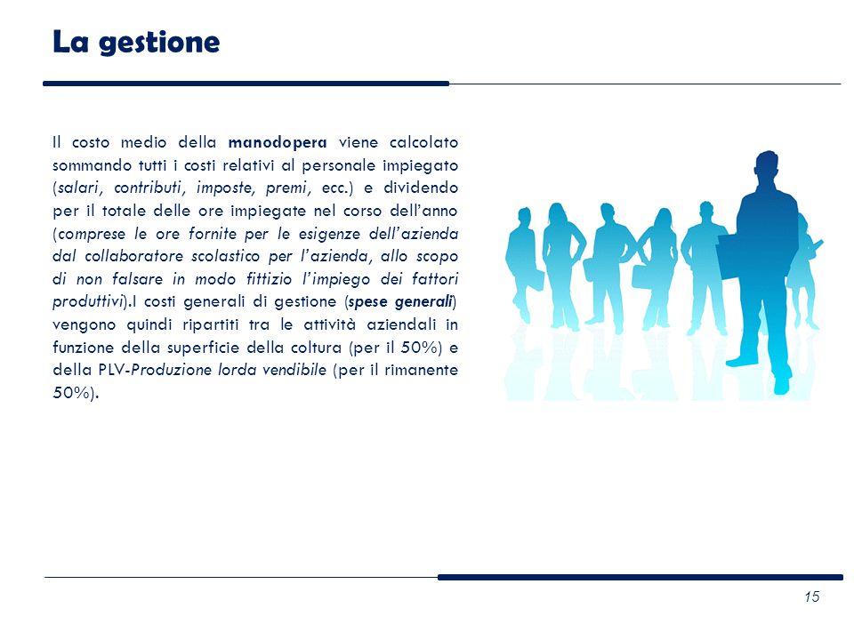 La gestione Il costo medio della manodopera viene calcolato sommando tutti i costi relativi al personale impiegato (salari, contributi, imposte, premi