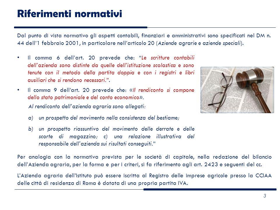 Riferimenti normativi Il comma 6 dellart. 20 prevede che: Le scritture contabili dellazienda sono distinte da quelle dellistituzione scolastica e sono