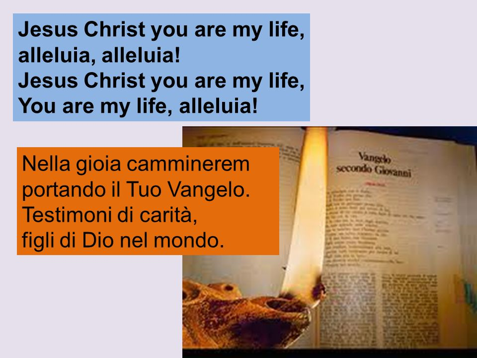 Jesus Christ you are my life, alleluia, alleluia! Jesus Christ you are my life, You are my life, alleluia! Nella gioia camminerem portando il Tuo Vang