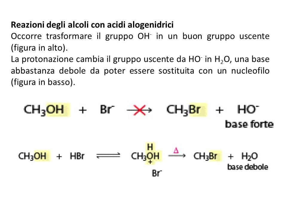 Reazioni degli alcoli con acidi alogenidrici Occorre trasformare il gruppo OH - in un buon gruppo uscente (figura in alto). La protonazione cambia il