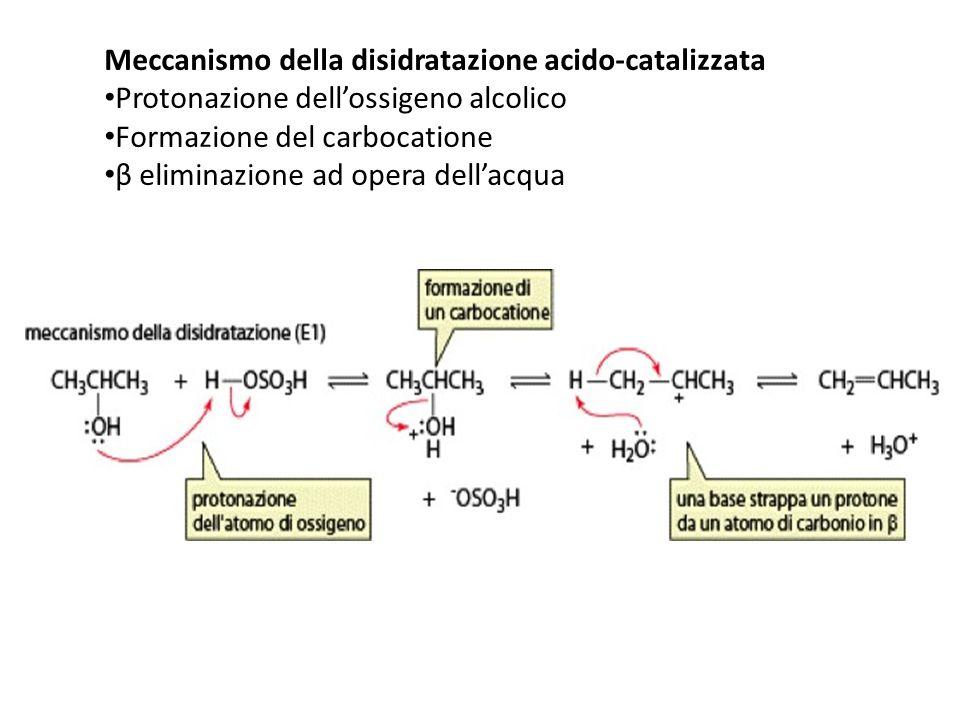 Meccanismo della disidratazione acido-catalizzata Protonazione dellossigeno alcolico Formazione del carbocatione β eliminazione ad opera dellacqua