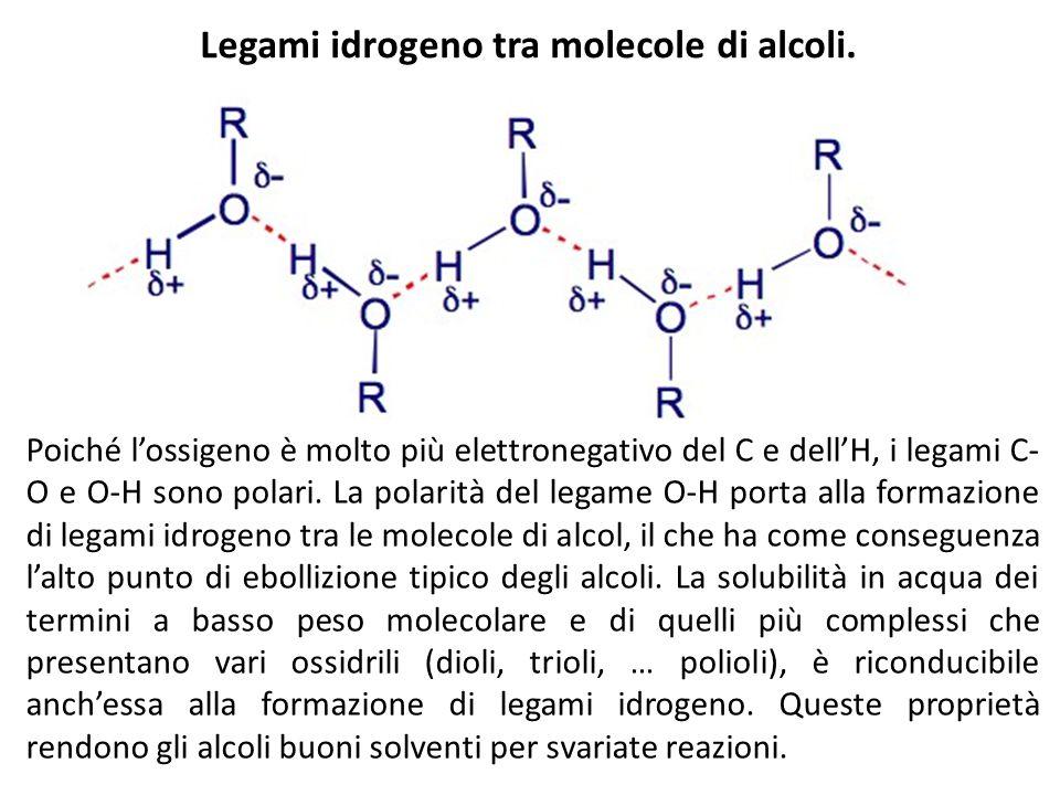 Legami idrogeno tra molecole di alcoli. Poiché lossigeno è molto più elettronegativo del C e dellH, i legami C- O e O-H sono polari. La polarità del l