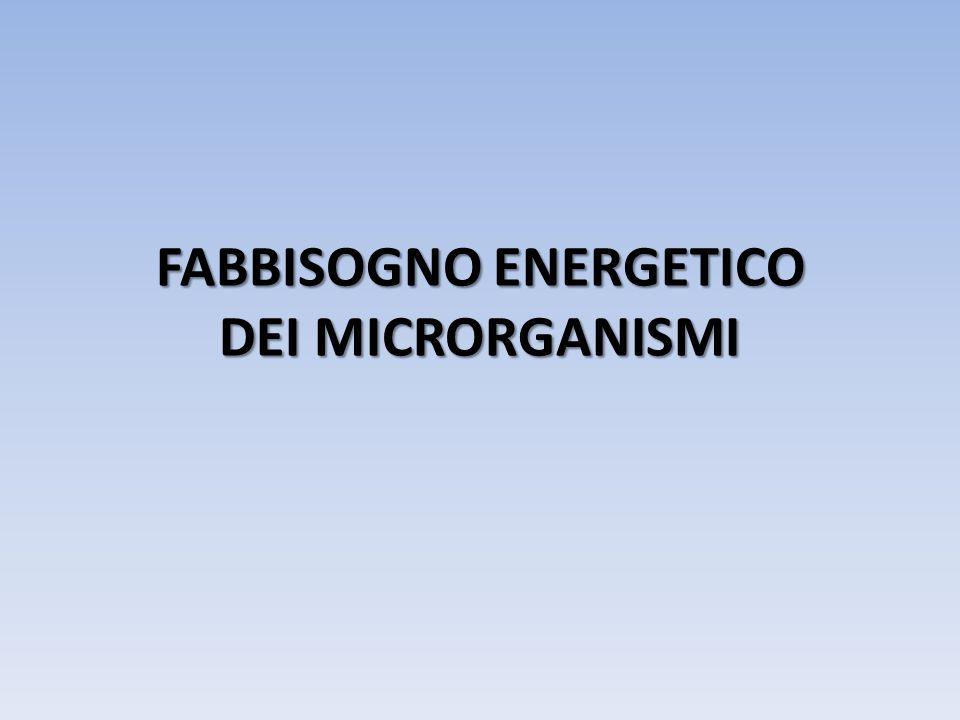 Fonte di FOSFORO La maggior parre dei microrganismi utilizza il P sotto forma inorganica, ossia come ione fosfato: PO 4 Tale ione viene utilizzato per la sintesi dei composti cellulari fosforilati come: l ATP, gli acidi nucleici e i fosfolipidi.
