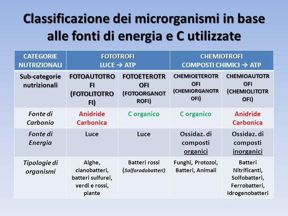 Classificazione dei microrganismi in base alle fonti di energia e C utilizzate CATEGORIE NUTRIZIONALIFOTOTROFI LUCE ATPCHEMIOTROFI COMPOSTI CHIMICI AT