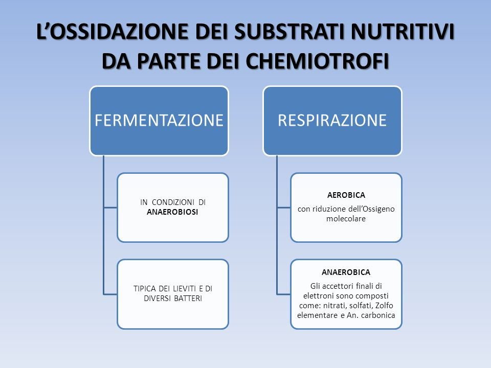 LOSSIDAZIONE DEI SUBSTRATI NUTRITIVI DA PARTE DEI CHEMIOTROFI FERMENTAZIONE IN CONDIZIONI DI ANAEROBIOSI TIPICA DEI LIEVITI E DI DIVERSI BATTERI RESPI