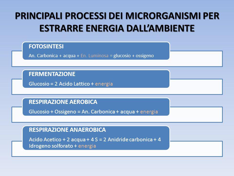 PRINCIPALI PROCESSI DEI MICRORGANISMI PER ESTRARRE ENERGIA DALLAMBIENTE FOTOSINTESI An. Carbonica + acqua + En. Luminosa = glucosio + ossigeno FERMENT