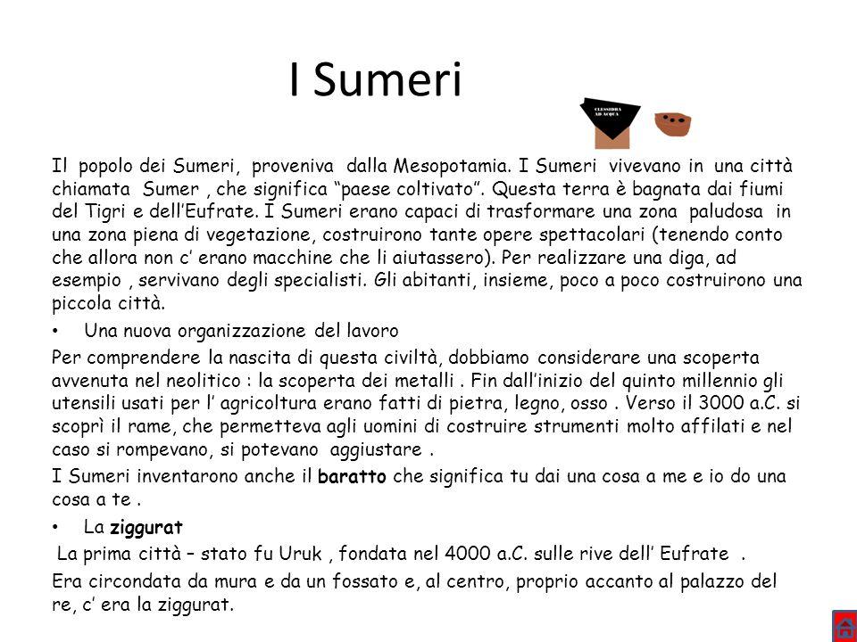 I Sumeri Il popolo dei Sumeri, proveniva dalla Mesopotamia. I Sumeri vivevano in una città chiamata Sumer, che significa paese coltivato. Questa terra