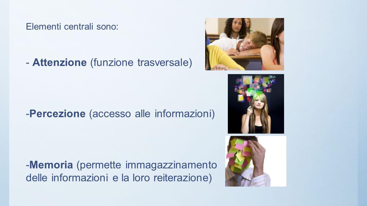 Elementi centrali sono: - Attenzione (funzione trasversale) -Percezione (accesso alle informazioni) -Memoria (permette immagazzinamento delle informazioni e la loro reiterazione)