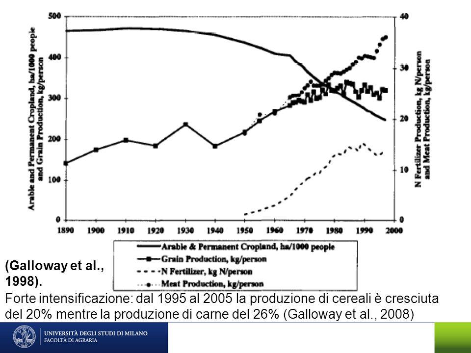 Forte intensificazione: dal 1995 al 2005 la produzione di cereali è cresciuta del 20% mentre la produzione di carne del 26% (Galloway et al., 2008)