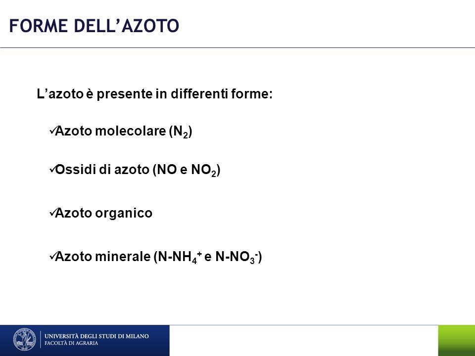 FORME DELLAZOTO Lazoto è presente in differenti forme: Azoto molecolare (N 2 ) Ossidi di azoto (NO e NO 2 ) Azoto organico Azoto minerale (N-NH 4 + e
