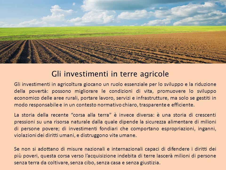 Gli investimenti in terre agricole Gli investimenti in agricoltura giocano un ruolo essenziale per lo sviluppo e la riduzione della povertà: possono m