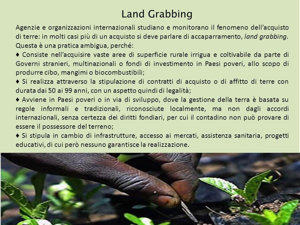 Land Grabbing Agenzie e organizzazioni internazionali studiano e monitorano il fenomeno dellacquisto di terre: in molti casi più di un acquisto si dev