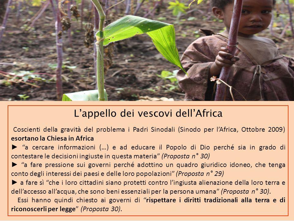 Lappello dei vescovi dellAfrica Coscienti della gravità del problema i Padri Sinodali (Sinodo per lAfrica, Ottobre 2009) esortano la Chiesa in Africa