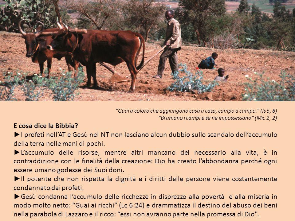 Guai a coloro che aggiungono casa a casa, campo a campo. (Is 5, 8) Bramano i campi e se ne impossessano (Mic 2, 2) E cosa dice la Bibbia? I profeti ne