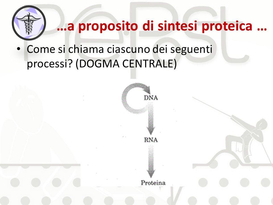 …a proposito di sintesi proteica … Come si chiama ciascuno dei seguenti processi? (DOGMA CENTRALE)