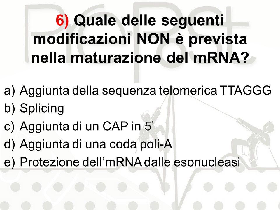 6) Quale delle seguenti modificazioni NON è prevista nella maturazione del mRNA? a)Aggiunta della sequenza telomerica TTAGGG b)Splicing c)Aggiunta di