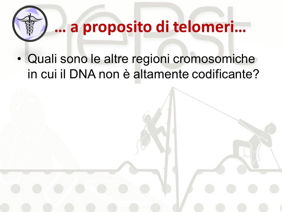 … a proposito di telomeri… Quali sono le altre regioni cromosomiche in cui il DNA non è altamente codificante?
