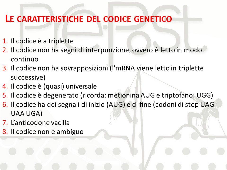 L E CARATTERISTICHE DEL CODICE GENETICO 1.Il codice è a triplette 2.Il codice non ha segni di interpunzione, ovvero è letto in modo continuo 3.Il codi