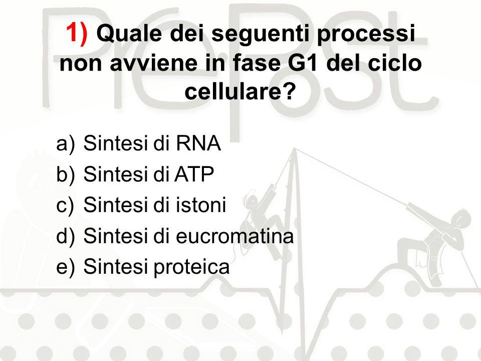 1) Quale dei seguenti processi non avviene in fase G1 del ciclo cellulare? a)Sintesi di RNA b)Sintesi di ATP c)Sintesi di istoni d)Sintesi di eucromat