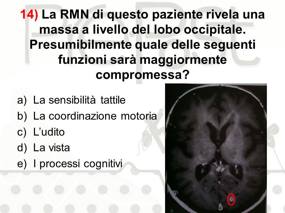 14) La RMN di questo paziente rivela una massa a livello del lobo occipitale. Presumibilmente quale delle seguenti funzioni sarà maggiormente comprome