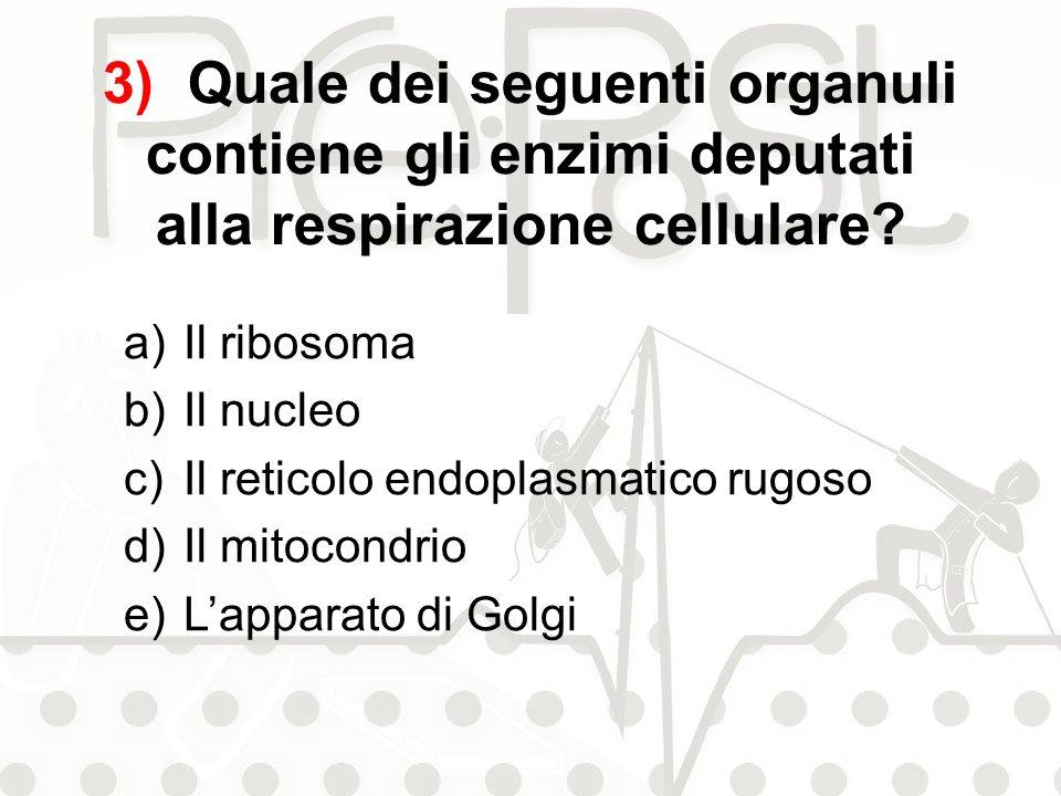 3) Quale dei seguenti organuli contiene gli enzimi deputati alla respirazione cellulare? a)Il ribosoma b)Il nucleo c)Il reticolo endoplasmatico rugoso