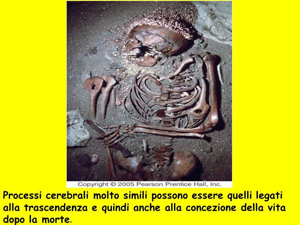 Processi cerebrali molto simili possono essere quelli legati alla trascendenza e quindi anche alla concezione della vita dopo la morte.