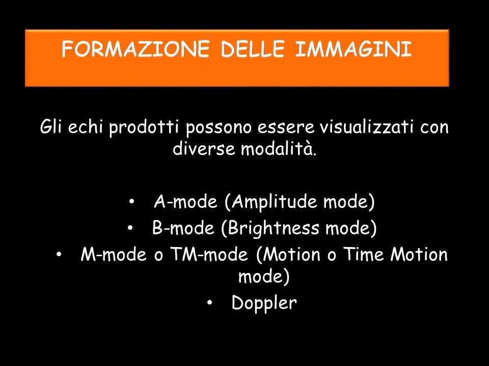 Gli echi prodotti possono essere visualizzati con diverse modalità.