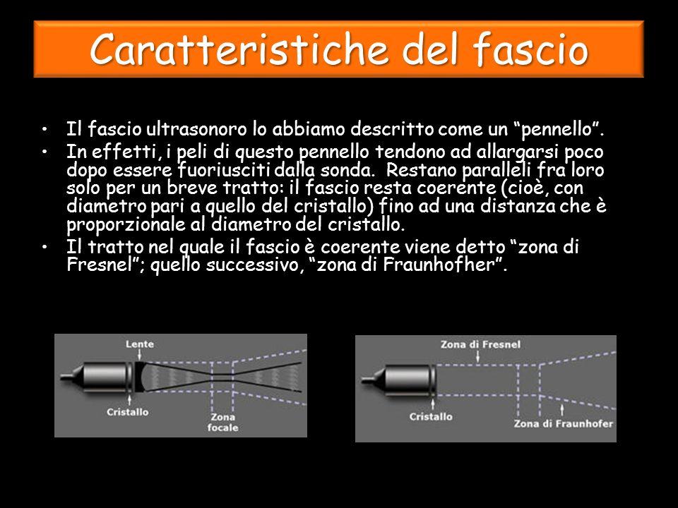 Caratteristiche del fascio Il fascio ultrasonoro lo abbiamo descritto come un pennello.
